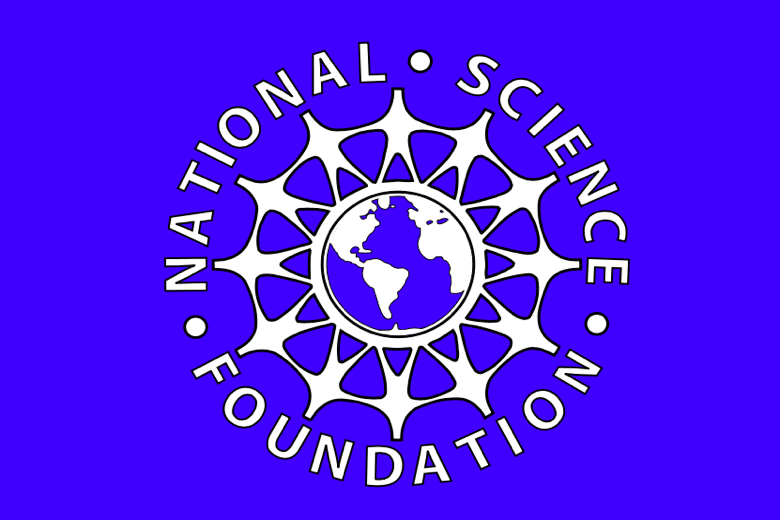 NSF Award for Young Professionals-0
